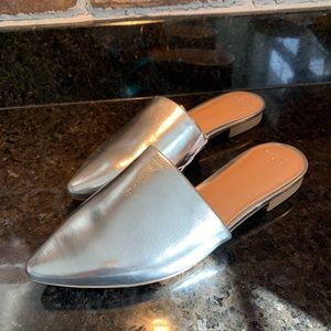 A new day silver mule